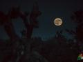 desert_daze_2016_moon