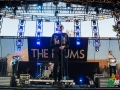 The_drums_FYF_lawn_stage_1