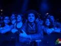 gogol_bordello_observatory_fans