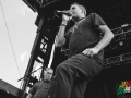 The_Vandals_Riot_Fest_Chicago3