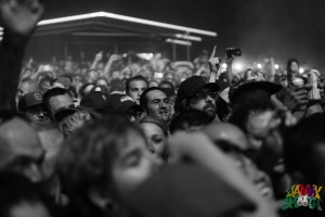 Fans packed in tight at It's Not Dead Fest
