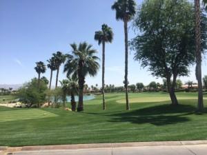 golf_course_coachella