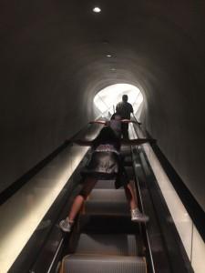 the_broad_escalator