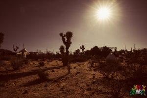 Desert Daze 2016 Joshua Tree