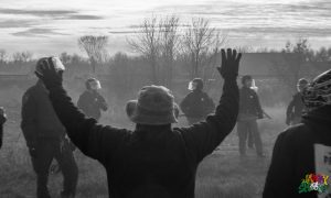 Hands Up, Don't DAPL by Berry Ward